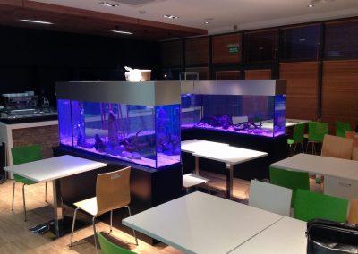 akwarium_na_wymiar_w_restauracji