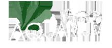 Firma akwarystyczna studioAQUARIUM